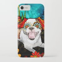 shih tzu iPhone & iPod Cases featuring Shih Tzu by RobiniArt