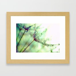 Wish With All Your Heart Framed Art Print