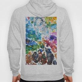 Artist's Palette Pattern Hoody