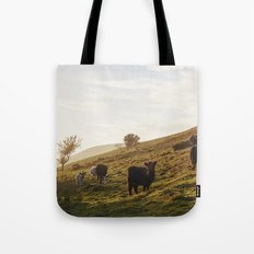 Cattle grazing on mountainside. Derbyshire, UK. Tote Bag
