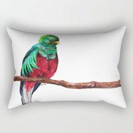 Pharomachrus mocinno Rectangular Pillow