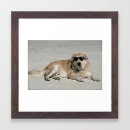 Sup Dog Framed Art Print