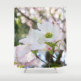 blush kissed dogwood with bokeh Shower Curtain