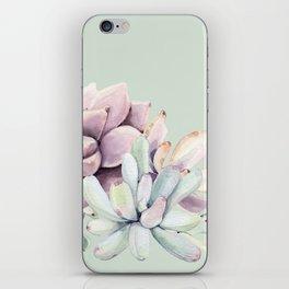 Beautiful Mint Succulents iPhone Skin