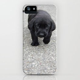 Words are inadequate to the task of describing this amount of cuteness. iPhone Case