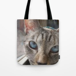 Icy Stare Tote Bag
