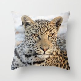 Female leopard in Namibia, Africa Throw Pillow