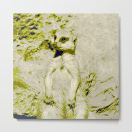 Pop Art Meerkat 1 Metal Print