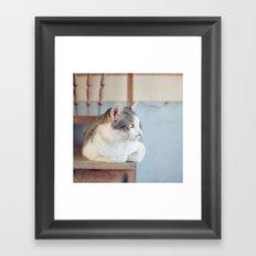 My Cat Framed Art Print