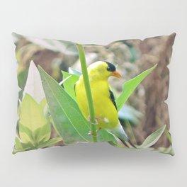 Goldfinch Pillow Sham