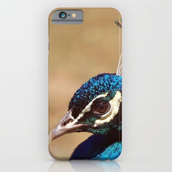 Indian Peacock Headshot iPhone & iPod Case