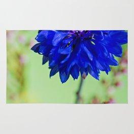 Beauty of blue cornflower Rug