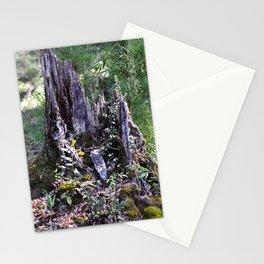 Mossy Stationery Cards