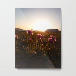 Flowers sunset 2 Metal Print