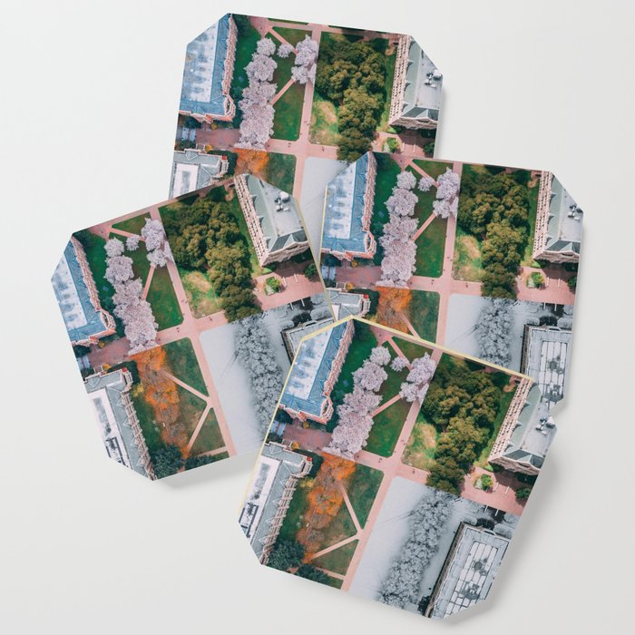 UW Cherry Blossoms: 4 Seasons Coaster