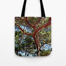 Autumnal lure of the forest Tote Bag