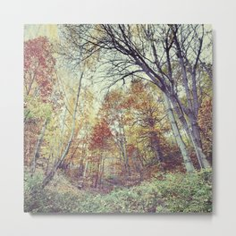 """""""Into the woods"""" Autumn wander. Metal Print"""