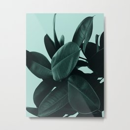 Dark Green Ficus Metal Print