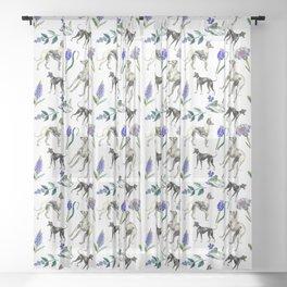 GREYHOUD, WHIPPET & HYACINTH FLOWERS Sheer Curtain
