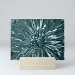 Flower | Flowers | Soft Blue Steel Mums Mini Art Print