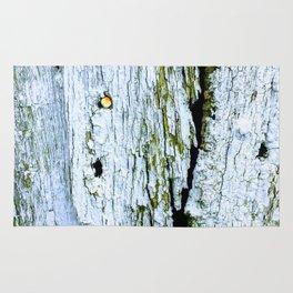 Weathered Barn Wall Wood Texture Rug