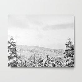 Deep Powder Trees // Black and White Landscape in the Rockies Metal Print