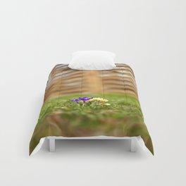 shrunk Comforters