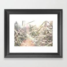 scrub Framed Art Print