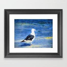 Seagull on Beach Framed Art Print