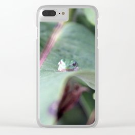 Tree Frog Clear iPhone Case