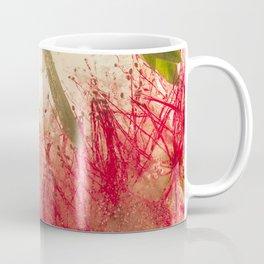 Weeping Bottlebrush Tree #42 Coffee Mug