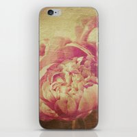 peonies iPhone & iPod Skins featuring Peonies by V. Sanderson / Chickens in the Trees