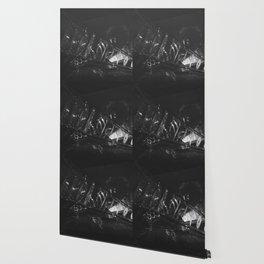 The Crash (Black and White) Wallpaper