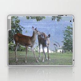 Early Evening Visitors Young Deer -Debra Cortese photo art Laptop & iPad Skin