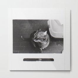 Astrid 4 Metal Print