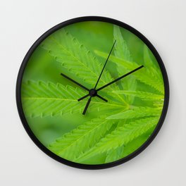 A Young Bud Wall Clock