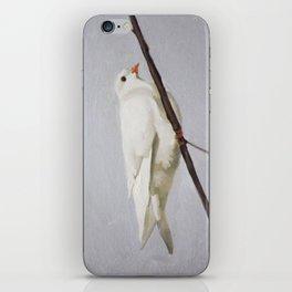 Winter Dove iPhone Skin