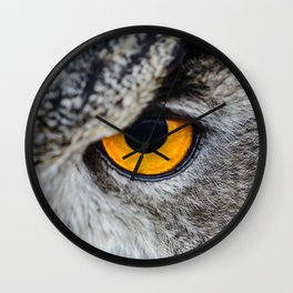 Eye of owl Wall Clock