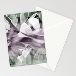 Pink  Exposures Stationery Cards