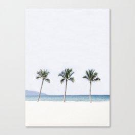 Palm trees 6 Canvas Print