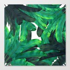 tropic green  Canvas Print