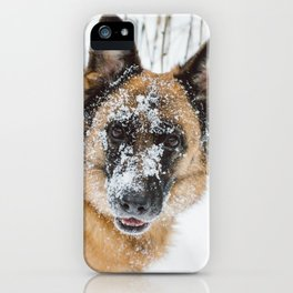 Dog in the Snow iPhone Case