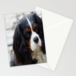 King Charles Cavalier Portrait Stationery Cards