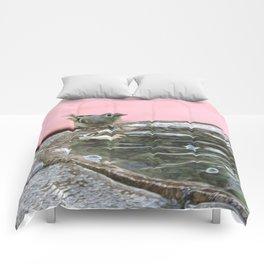 Kinglet at the Basin Rim Comforters