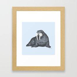 Frank Wallace in Blue   Nursery Art Walrus Drawing Framed Art Print