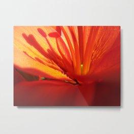 Red Stamen 86 Metal Print