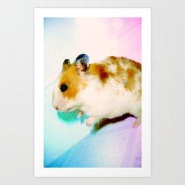 Pixi the Hamster Art Print