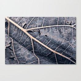 Organic Winter Decay Canvas Print