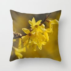 Gold Regen Throw Pillow