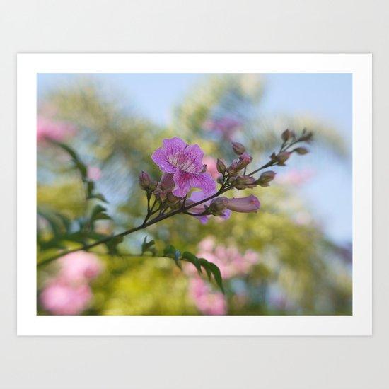 In Pastel Colors Art Print